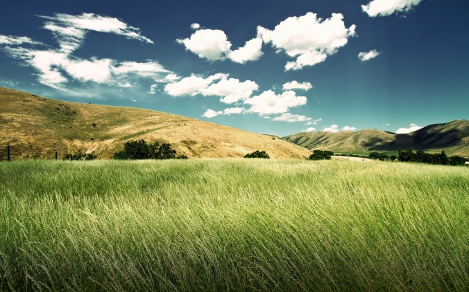 landscape-fascinating-green-valley-landscape-view-of-nature-under-blue-navy-sky-hi-res-wallpapers-green-valley-landscape-sunshine-seaside-green-sea-partnership-towering-sunshine-seaside-the-beauty-of