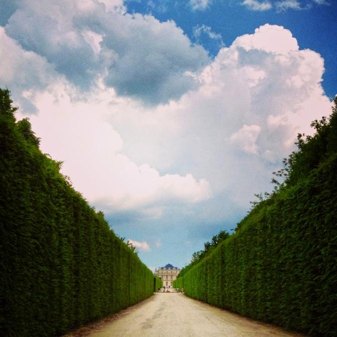 versailles hedges