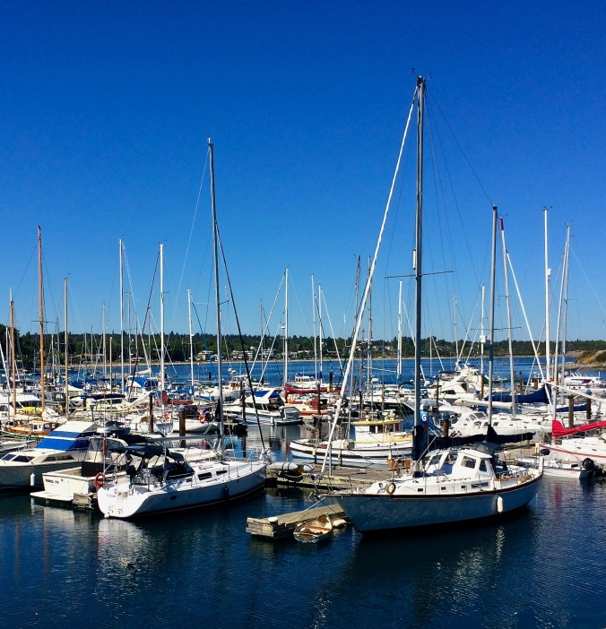 oak bay dock