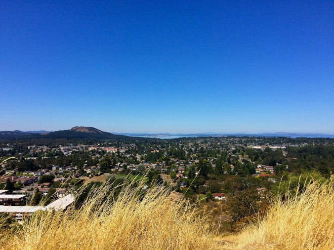 view from mt tolmie