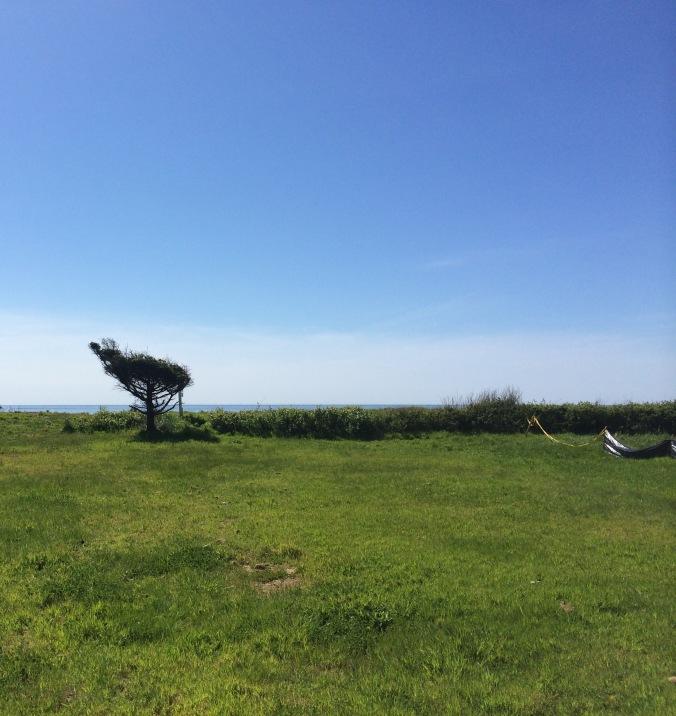 beach property 1