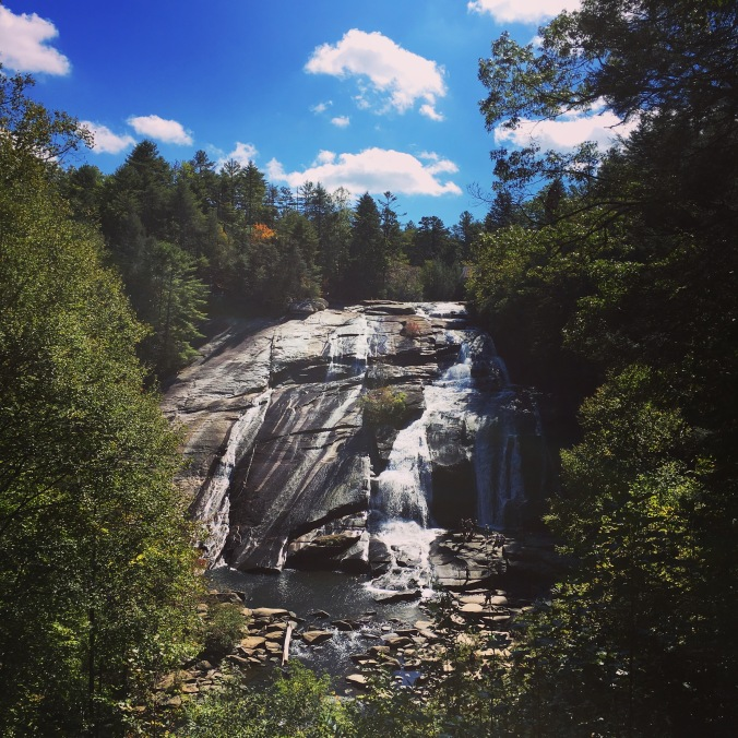 dupont-forest-falls