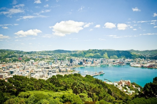 Mount-Victoria-view-WellingtonNZ-Photo-Capture-Studios
